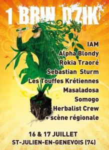 """Le festival """"Un Brin d'Zik"""" : c'est demain!"""